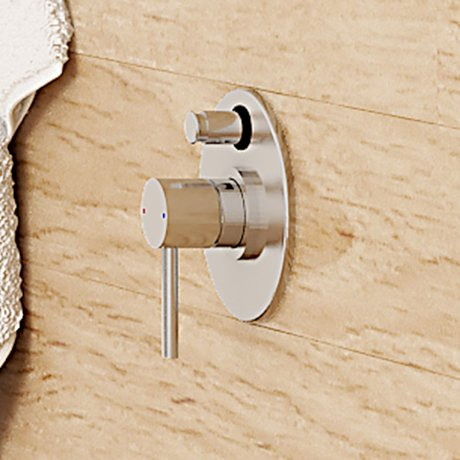 Caroma_Olida_Titan_Stainless_Steel_Bath_Shower_Mixer_with_Diverter_99002SS_LS_52972.jpg