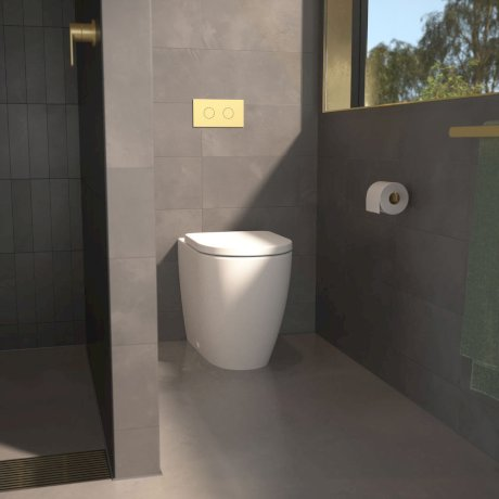 746280w_Urbane_Brass_15_toiletDetail.jpg