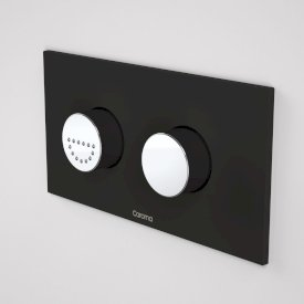 Invisi Series II® Round Dual Flush Plate & Raised Care Buttons (Plastic)